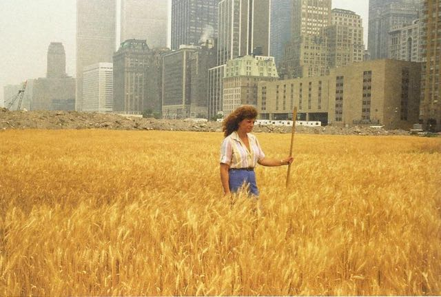 AgnesDenes wheatfield more than green